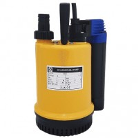 RS 100 Pump Submersible Water Pump fitted with Agma Switch 110v 75 LPM 7 HM