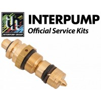 Interpump Service/Repair Kit 305
