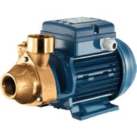 Pentax PM45 BR Pump Peripheral Turbine Pump 230v 40 Lpm 40 Hm