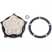 Everflo Pumps Diaphragm Assembly 1009038300 for EF4000 Pump